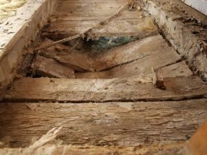 Majavammi poolt kahjustatud põrand